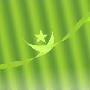 green background hd