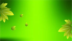 flex board hd green leaf background