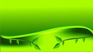 flex board green leaf background free