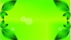 green leaf wallpeper background