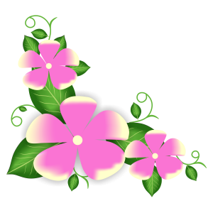 pink flower corner hd free downlod